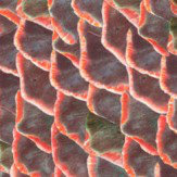 Coordonne Fish Skin Red Wallpaper