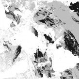 Coordonne Pollock Silver Wallpaper
