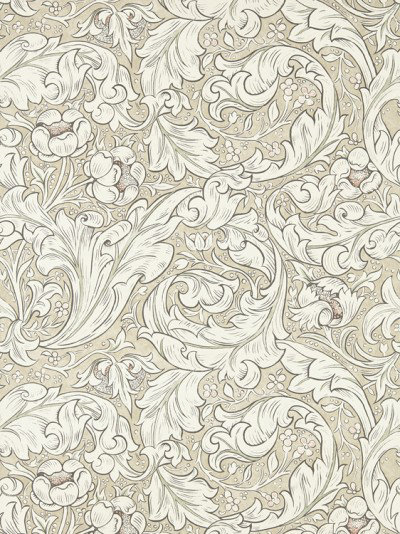 Morris Wallpapers Bachelors Button, 216051