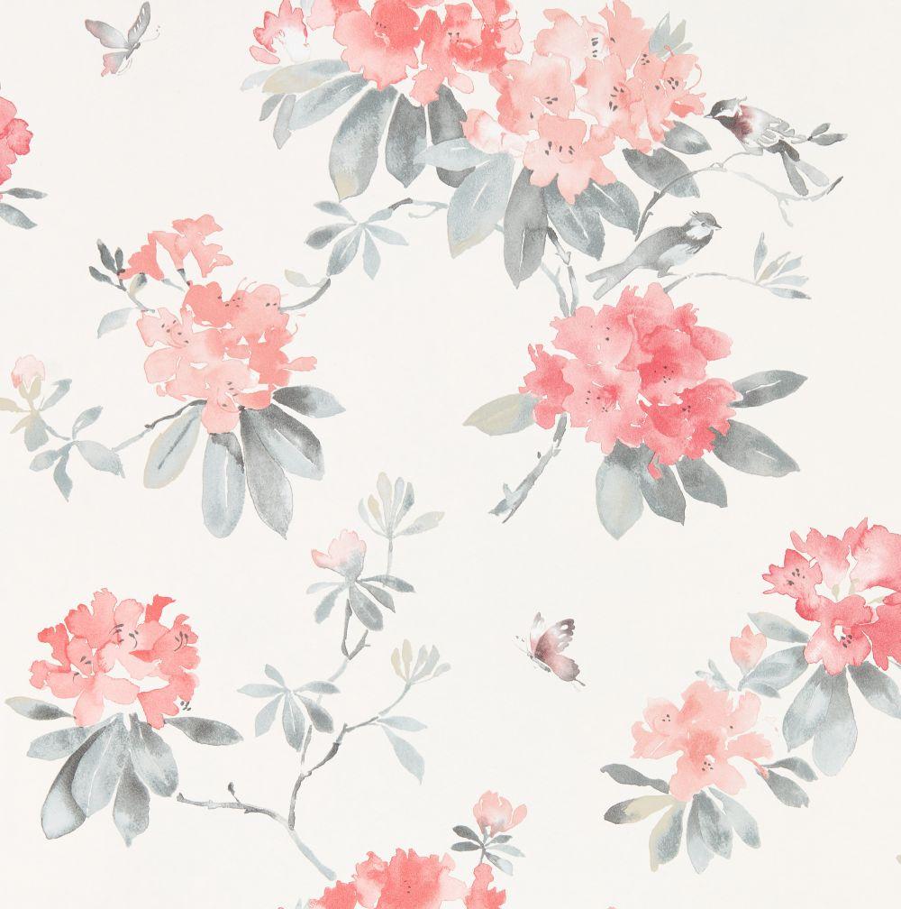 Sanderson Rhodera Coral and Grey Wallpaper - Product code: 216264