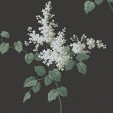 Boråstapeter Lilacs White and Black Wallpaper - Product code: 4037