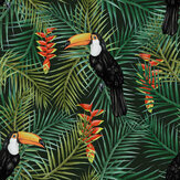 Graduate Collection Toucan Green Wallpaper