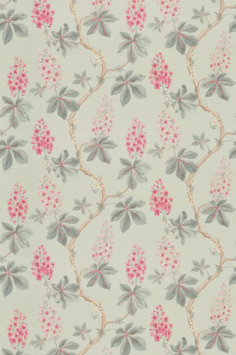 Sanderson Chestnut Tree Seaspray / Peony Fabric main image
