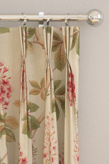 Chestnut Tree Curtains By Sanderson Coral Bayleaf