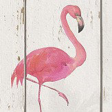 Albany Flamingo on Wood White Wallpaper
