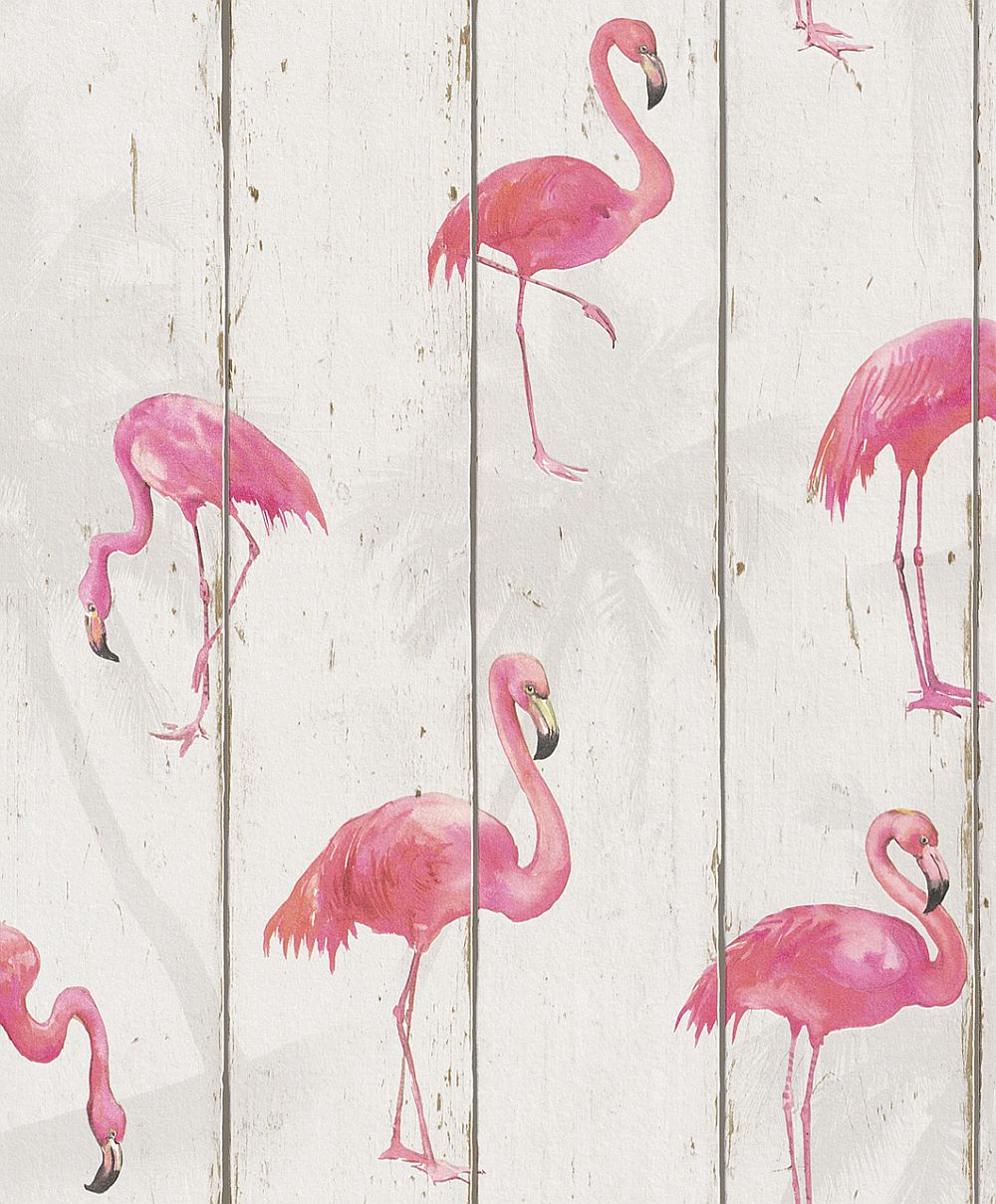 Albany Flamingo on Wood White Wallpaper - Product code: 479720