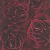 Albany Digital Rose Red Wallpaper