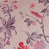 Little Greene Paradise Pink Wallpaper