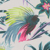 Matthew Williamson Menagerie Cerise / Teal Wallpaper