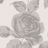SketchTwenty 3 Rose  Silver Wallpaper - Product code: SR00522
