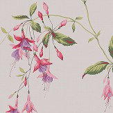 Colefax and Fowler Octavia Pink / Green Wallpaper