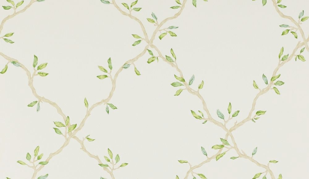 Leaf Trellis By Colefax And Fowler