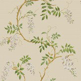 Colefax and Fowler Alderney Cream Wallpaper - Product code: 07963/02