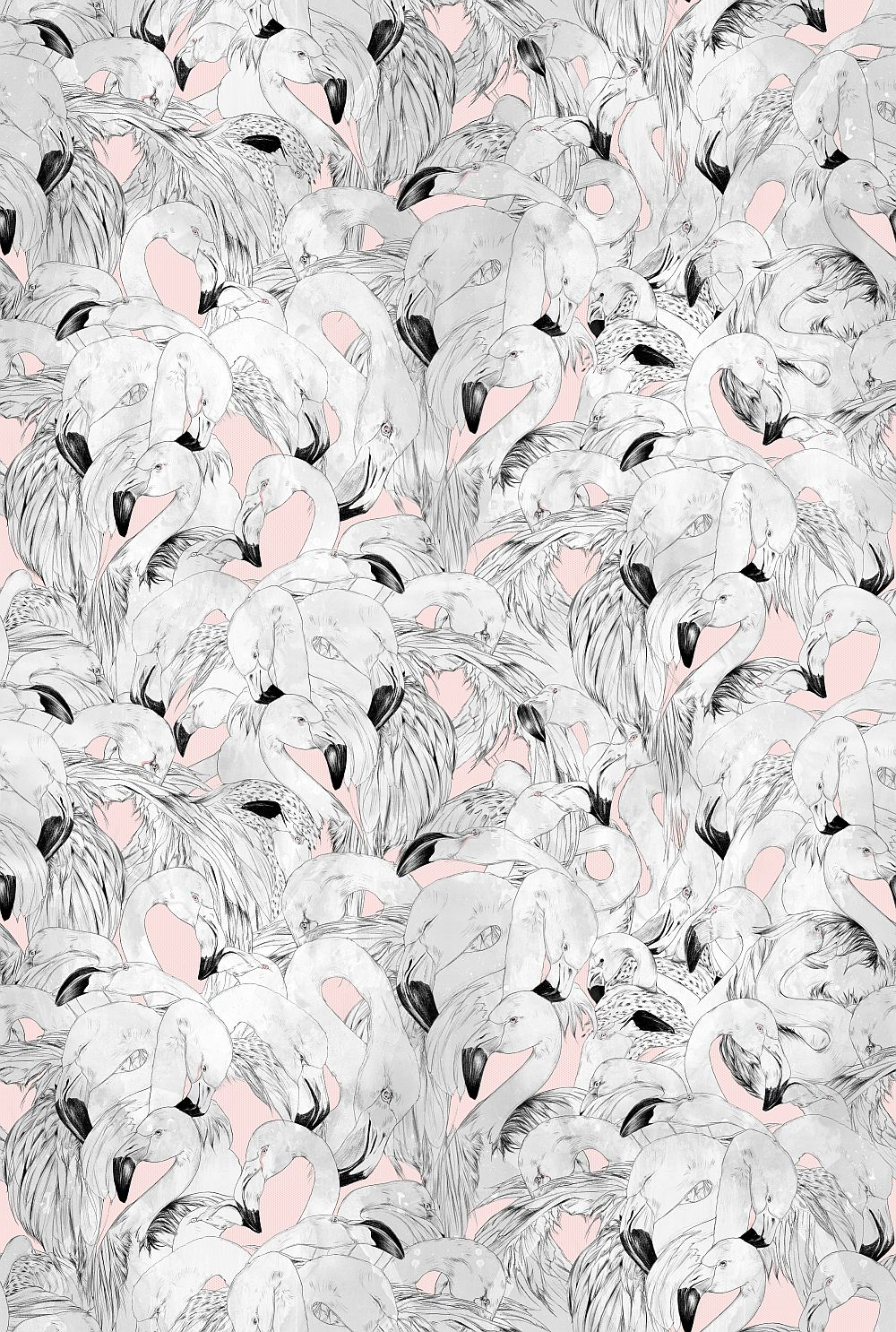 17 Patterns Flamingo Pink Wallpaper - Product code: A08-FM-01W