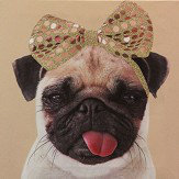 Arthouse Lola The Pug Multi Art - Product code: 004014