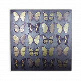 Arthouse Butterflies Black Art - Product code: 004311