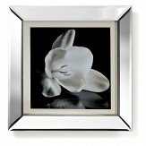 Arthouse Showstopper Floral Black / White Art