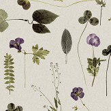 Eco Wallpaper Botanica Purple and Green  Wallpaper