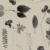 Eco Wallpaper Botanica Grey Wallpaper