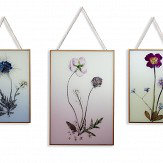 Arthouse Copper Wild Flowers Set of 3 Multi Art