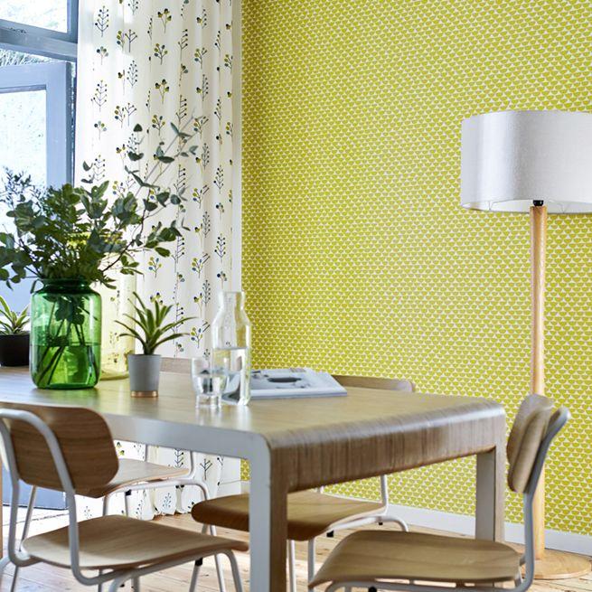 Kielo Wallpaper - Citrus - by Scion