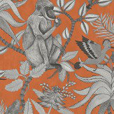 Cole & Son Savuti Orange Wallpaper