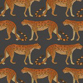 Cole & Son Leopard Walk Charcoal / Orange Wallpaper
