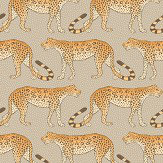 Cole & Son Leopard Walk Stone / Orange Wallpaper - Product code: 109/2010