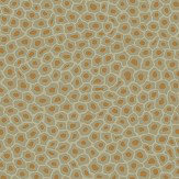 Cole & Son Senzo Spot Olive Wallpaper - Product code: 109/6029