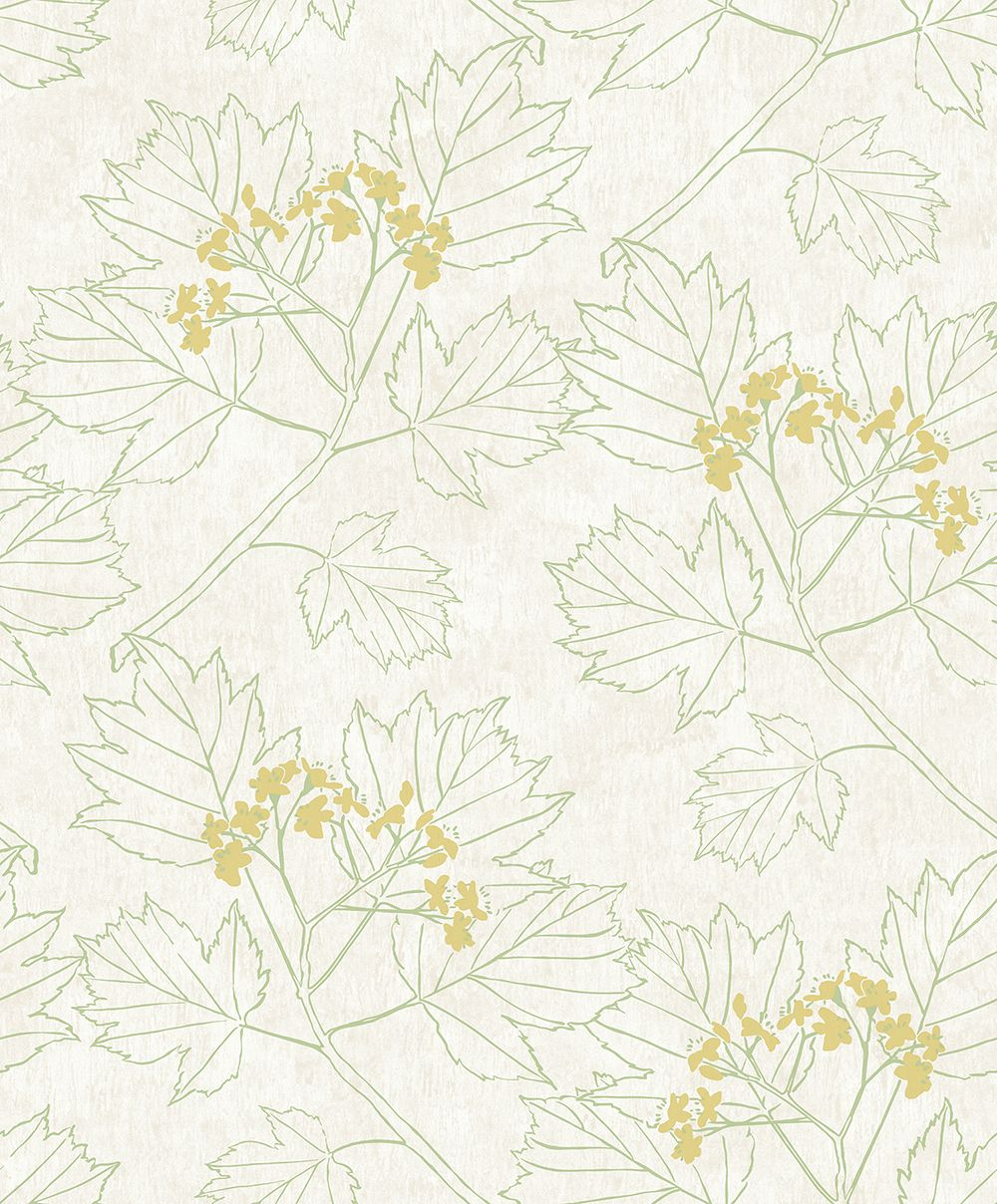The Paper Partnership Nutley Green Wallpaper - Product code: WP0080302