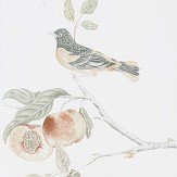 Sanderson Fruit Aviary  Ivory / Mineral  Wallpaper