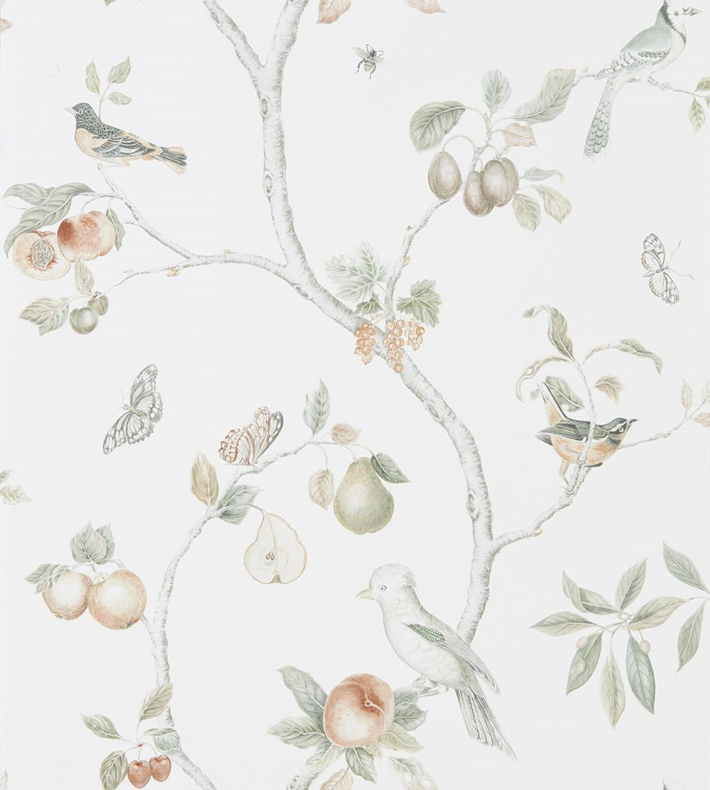 Sanderson Fruit Aviary  Ivory / Mineral  Wallpaper main image