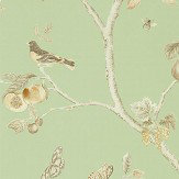 Sanderson Fruit Aviary Sage / Neutral Wallpaper - Product code: 216311