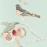 Sanderson Fruit Aviary Duck Egg / Multi Wallpaper