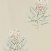 Sanderson Protea Flower Russet / Green Wallpaper
