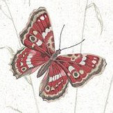 Galerie Meadow Butterflies Red Wallpaper