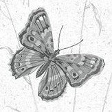 Galerie Meadow Butterflies Black and Grey Wallpaper
