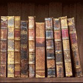 Albany Vintage Books Brown Wallpaper