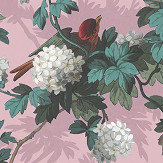 The Vintage Collection Heritage Bird Print Pink Wallpaper