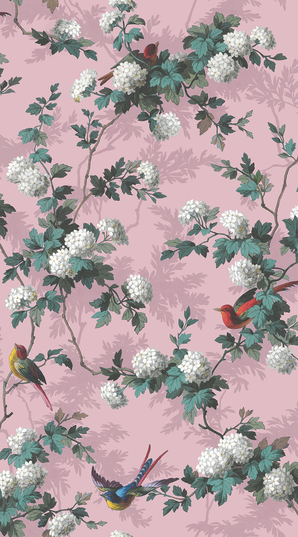 The Vintage Collection Heritage Bird Print Pink Wallpaper - Product code: HWP/12010/2
