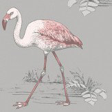 Albany Flamingo Lake Grey Wallpaper - Product code: 12381