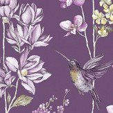 Albany Charm Plum Wallpaper