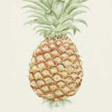 Sanderson Pineapple Royale Artichoke / Amber Fabric - Product code: 226300