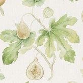 Sanderson Fig Harvest Garden Green Fabric - Product code: 226329
