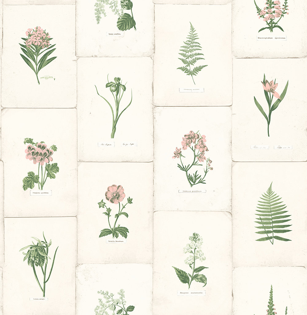 The Paper Partnership Maund Pink & Green Wallpaper - Product code: WP0090903