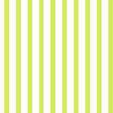 Coordonne Betula Verde Wallpaper