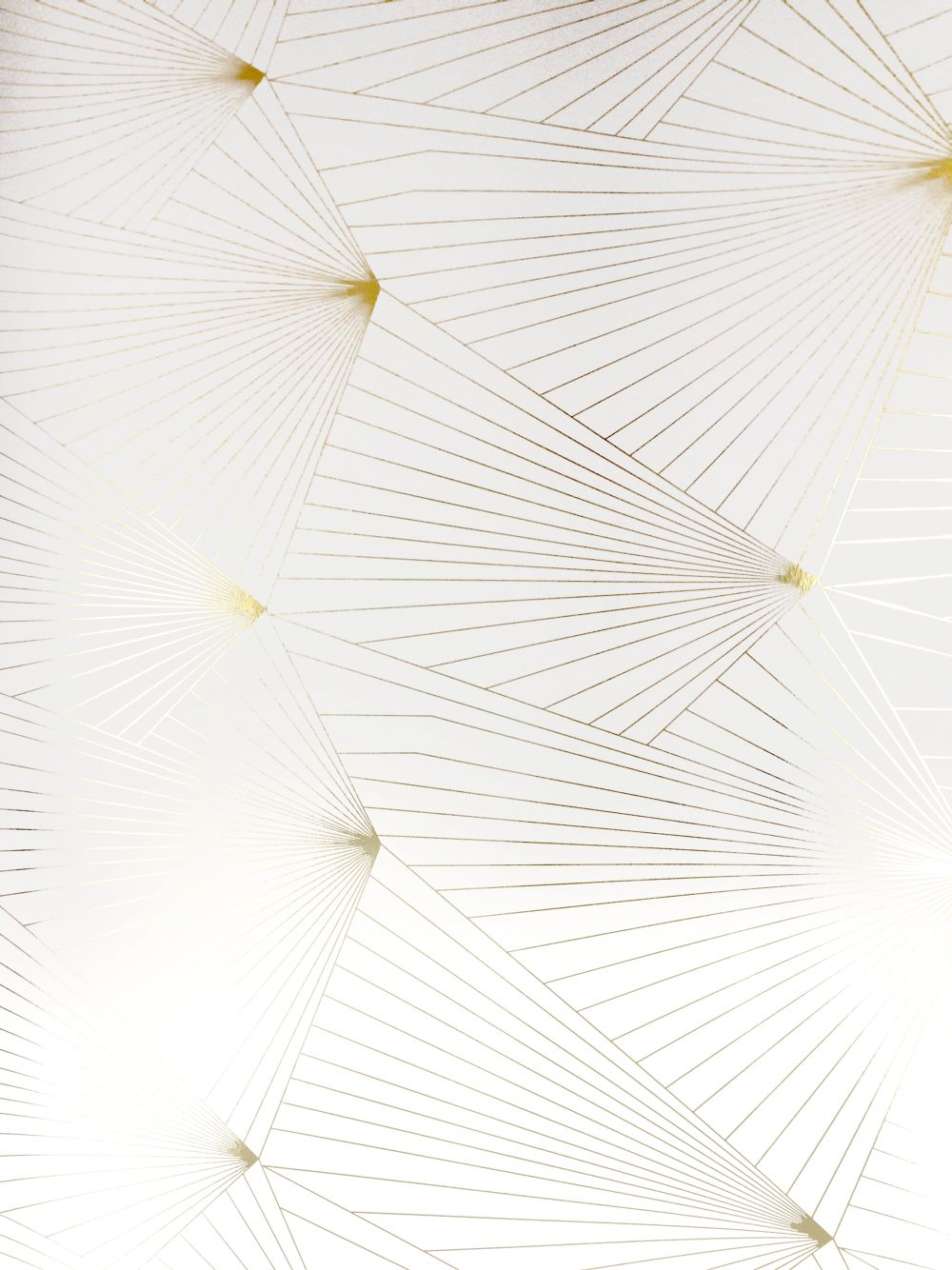Erica Wakerly Fan Gold / White Wallpaper - Product code: FAN 013