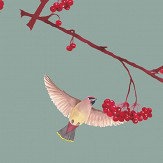 Petronella Hall Waxwing China Blue Wallpaper