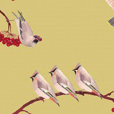 Petronella Hall Waxwing Lentil Wallpaper