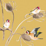 Petronella Hall Goldfinch Straw Wallpaper